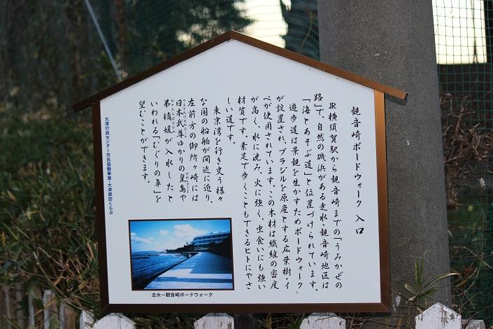 boardwalkenter