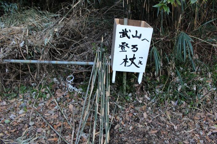 takeyama tsue